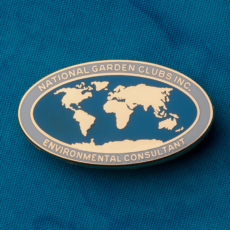 Environmental Studies Consultant Pin