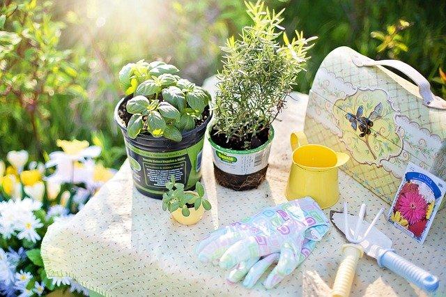 Homepage | National Garden Clubs, Inc. on Backyard Landscape Planner id=34848