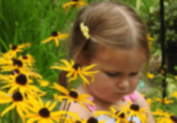 Child smelling daisies